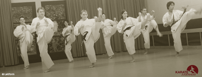 Karate Jugenheim Training [blogheader]