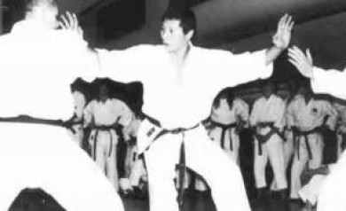 The Source of Shotokan Karate